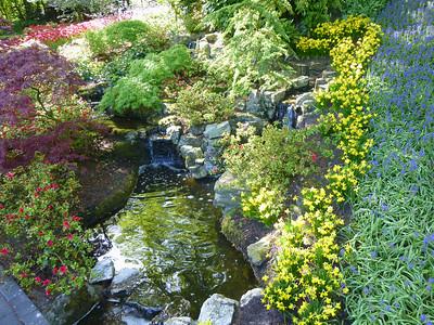 Amsterdam Keukenhof Gardens 2015  18
