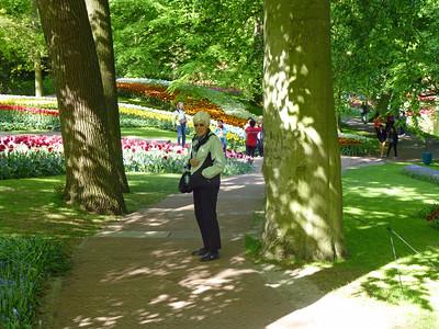 Amsterdam Keukenhof Gardens 2015  14