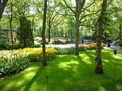 Amsterdam Keukenhof Gardens 2015  12