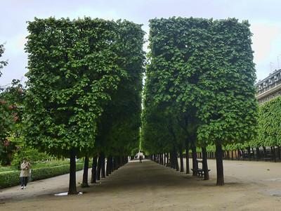 Paris Prelude 7