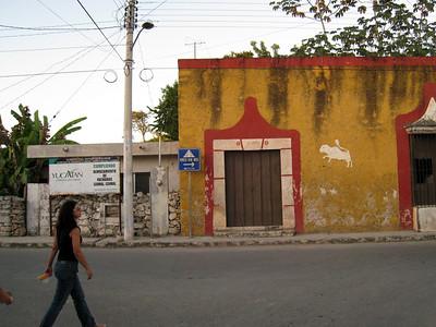 Mexico  Van to Izama l11:25:07 25
