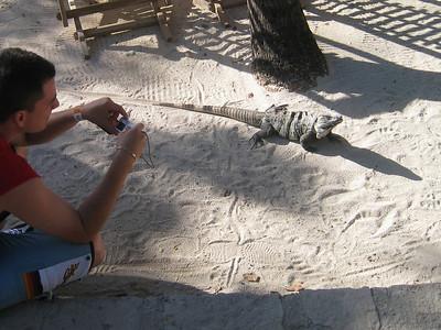 Mexico Tulum Ruins:Xel-Há 12:02:07 23