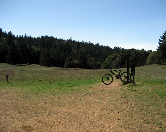 Portrero Meadow, Mt. Tamalpais