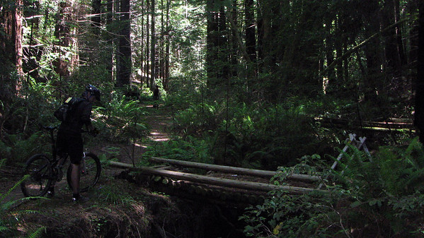 The bottom of Manly Gulch Trail