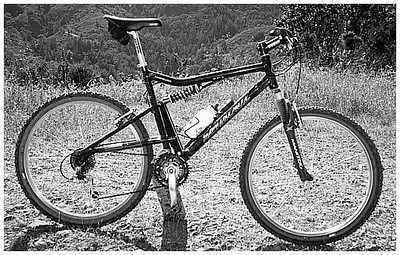 1998 Santa Cruz Heckler