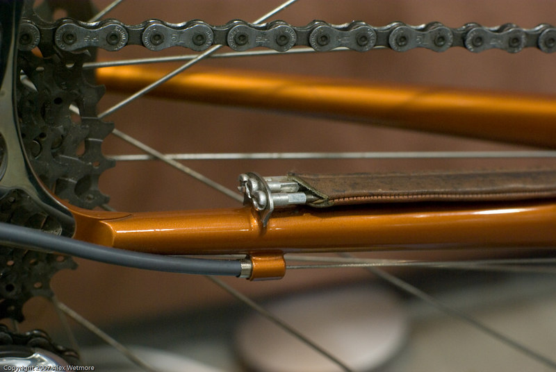 Spare spokes surrounded in leather as a chainslap guard.