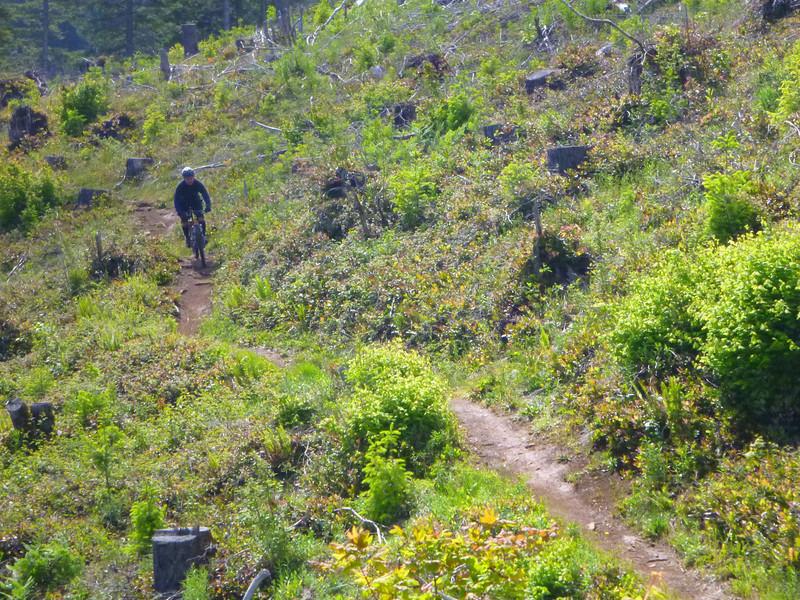 Deven, on Trail #6