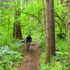 Deven, Trail #50