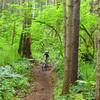 Fred, Trail #50