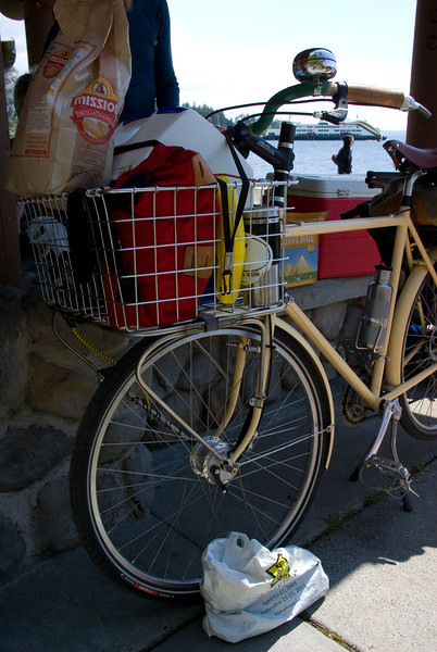 Ro's porteur rack built by David Wilson.  Six point mounting, stainless steel, TIG welded