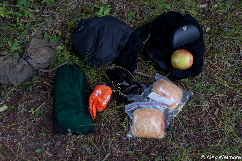 This is what I carried in my saddlebag (clockwise): tools, down vest, long johns, apple, sunglasses, two PB&J, gloves,emergency bivy, tarp