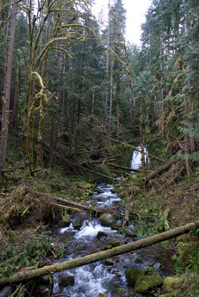This is an impressive little waterfall with a high volume.  Kent, Mark, and I camped here a few years back.