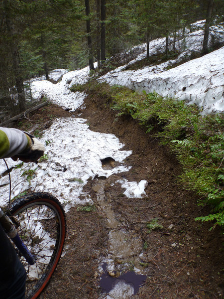 You can see that the trail often turns into a creek.
