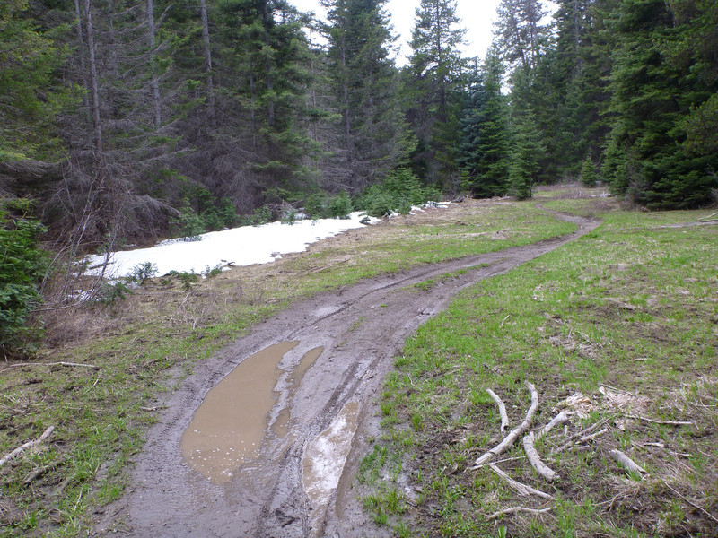 We're back below the snow.  Muddy, but good riding.