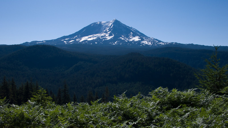 Mt Adams and the valley below