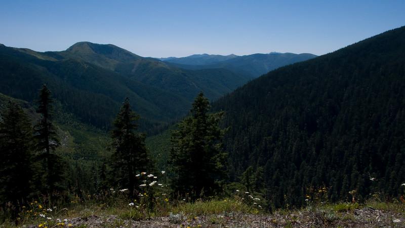 The valley below NF-42