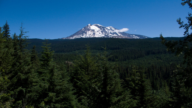 Mt Adams view from descent on NF-23
