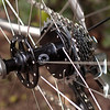 "American Classic ""RD-205"" rear hub (24-hole), with Kinlin XR-270 rim, DT Revolution spokes, and a mix of drive side brass/non-drive side alloy nipples.  Radial spoking on the non-drive side and 2-cross on the drive side.<br /> <br /> The selection of parts for, and build of this wheel were done over many months as I just couldn't decide if the offset spoke bed of the Velocity was necessary to compensate for the extra dishing of a Campagnolo-compatible cassette hub.  In the end, I realized that I needed a deep rim to compensate for the lack of spokes (24 spokes + 165 lbs = not an ideal combination) and I didn't want to get a set of Velocity Deep-V rims (because they're the rage now with the hipster crowd).  The Kinlins were very well-regarded and on-sale to boot.<br /> <br /> Update after 200 miles on the 20/24 AM/Kinlin wheels: despite my initial reservation about the durability of these low-spoke-count wheels, they've actually remained very true; so much so that I did not have to adjust anything since I finished the build and put them on the bike.  I don't know if I should be more impressed by my own craftsmanship or the Kinlin rims."