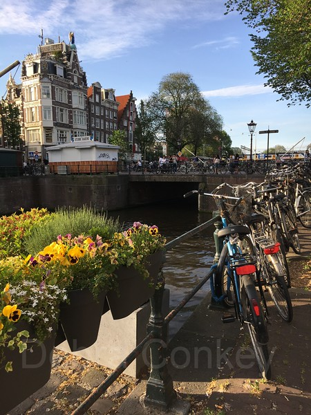 Flowerbox & bicycles on the Singel Canal, Amsterdam, The Netherlands