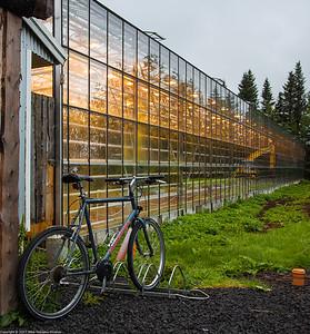 Fridheimar Farm, Iceland