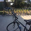 Bycycling Florida 2017