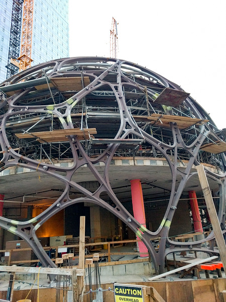 the biodome in front of Amazon's building.