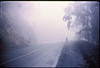 3*Sun, Mar 5, 1972<br /> People: lone cyclist<br /> Subject: fog <br /> Place: Tunnel Rd, Oakland Hills<br /> Activity: bike<br /> Comments: