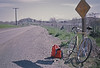 4*Sat, Mar 31, 1973<br /> People: 1-3 cyclists up road<br /> Subject: Nishiki Semi-Pro 1 week old<br /> Place: near Vallejo<br /> Activity: GPP bike ride<br /> Comments: Mt D in distance. Bike has no rack. Fingertips. Chrome seat/chain stays.  Bike stolen from driveway in just few months,  Dates not known.