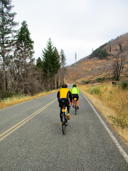 Riding along Cow Creek Road into the 2013 Douglas Complex Fire area.