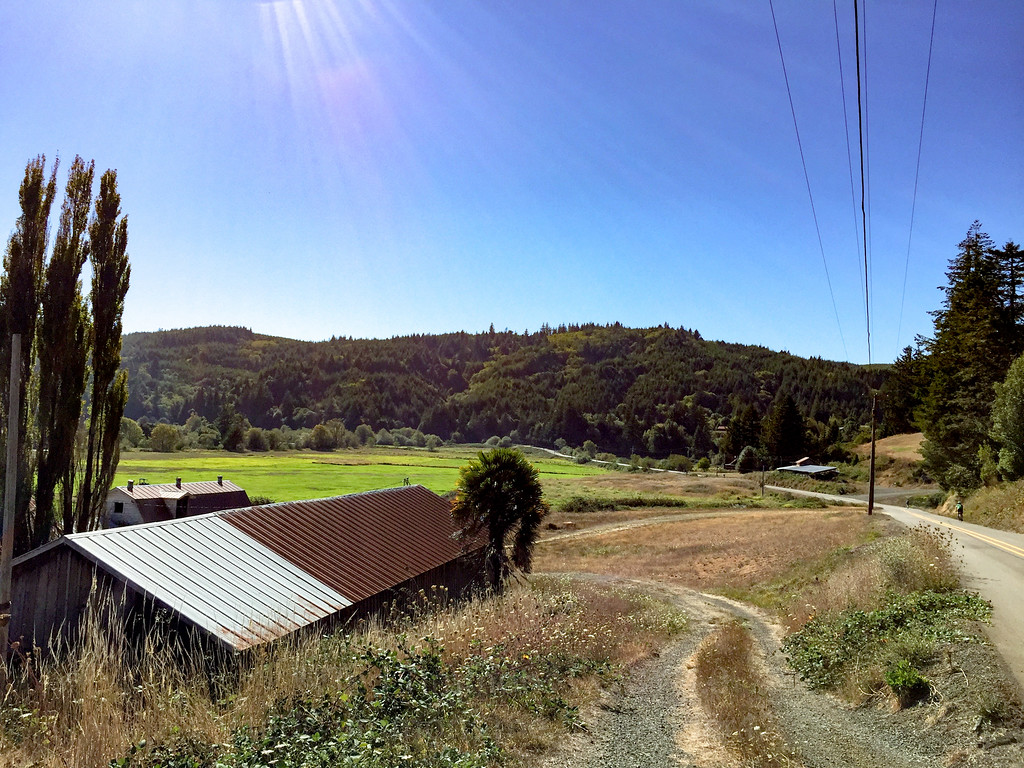 Another bucolic scene in the Coquille River valley.