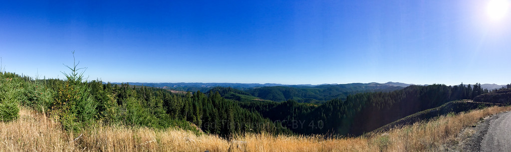 Another panorama from on top of Tyee.