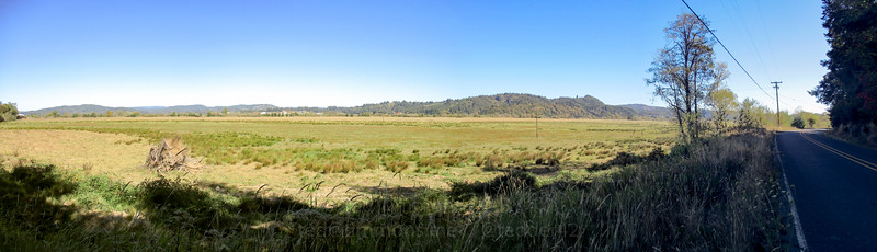 Panorama in the Coquille River valley.