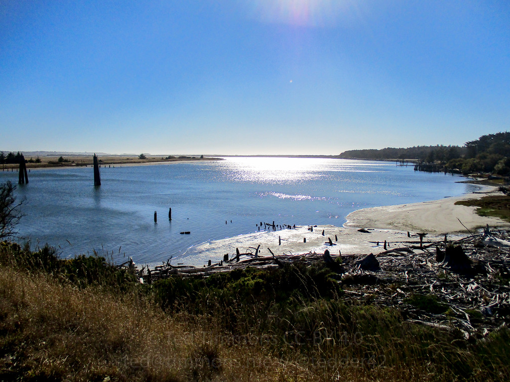 Looking out across the Coquille River estuary.