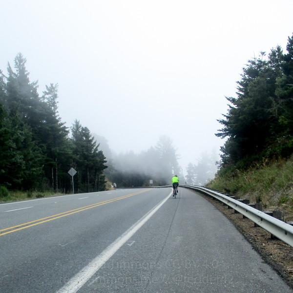 Fog, blowing across Highway 101.