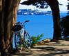 fuji_hill_alcatraz