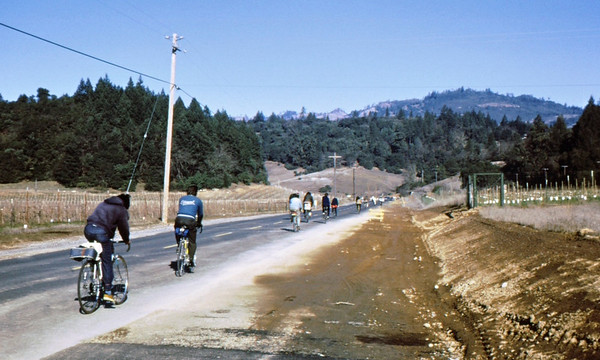 People: 8 GPP cycists, incl Seiji Kawamura (early 70's GPP Pres) at back<br /> Subject: <br /> Place: Napa Valley<br /> Activity: GPP ride<br /> Comments: Riders stay in sight of each other<br /> 4*Sun, Feb 13, 1972
