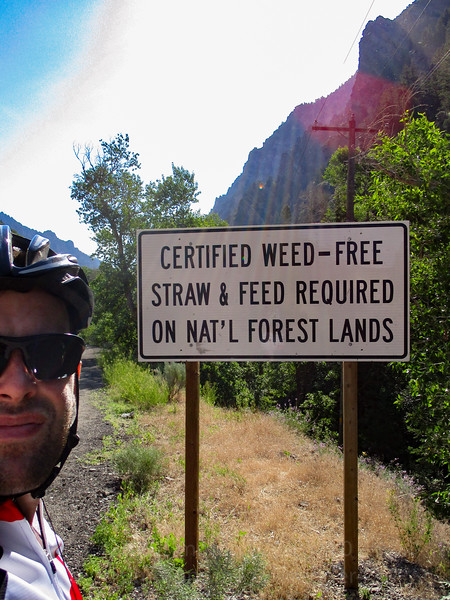 I'm not certified, but I'm weed-free.