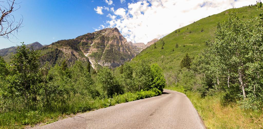 Road, aspens, mountain. Dramatic.
