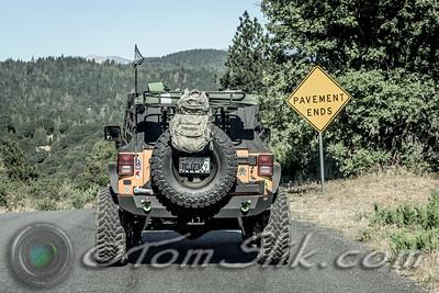 Big Bear Forest Fest XIX 2016
