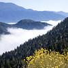 Big Bear Lake in Cloud
