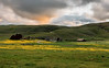 Pastoral Scenery at Sunset