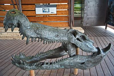 20180614_BBNP_Fossil_Exhibit_750_7093a