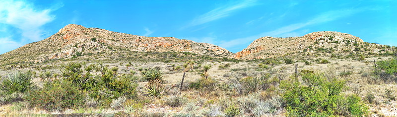 Panorama of the Chihuahuan Desert