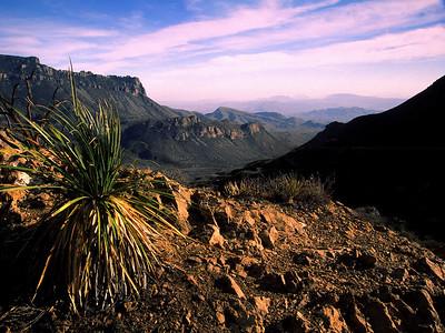 Lost Mine Trail View into Mexico