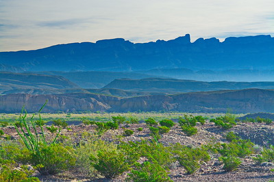 Landscape in Big Bend