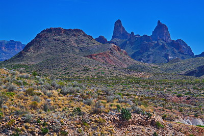 Mule Ears, the remains of a volcano