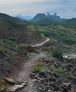 Trail to Mule Ears