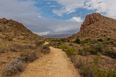 Looking back on the Grapevine Hills Trail.