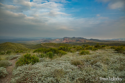 Big Bend State Park-5089
