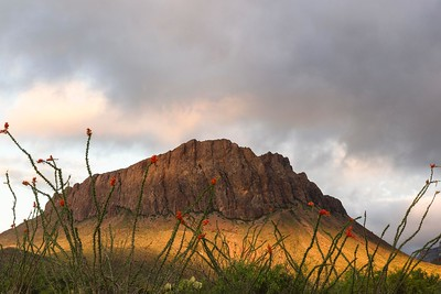 Nugget Mountain from Glen Springs road at sunrise